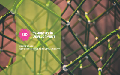Expert Track: Systems Thinking for Sustainability